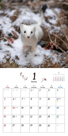 coto coto felt works フェルトの森の仲間たち カレンダー2020