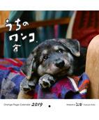 オレンジページ うちのワンコ。壁掛カレンダー2019