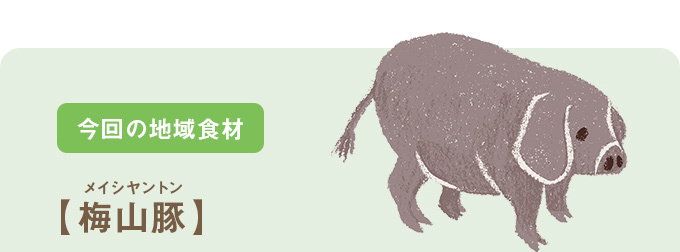 今回の地域食材【梅山豚】