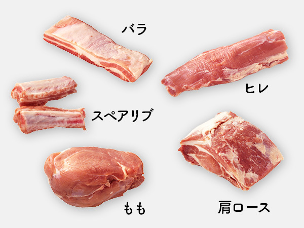 豚バラ・スペアリブ、豚ヒレ、豚肩ロース、豚もも