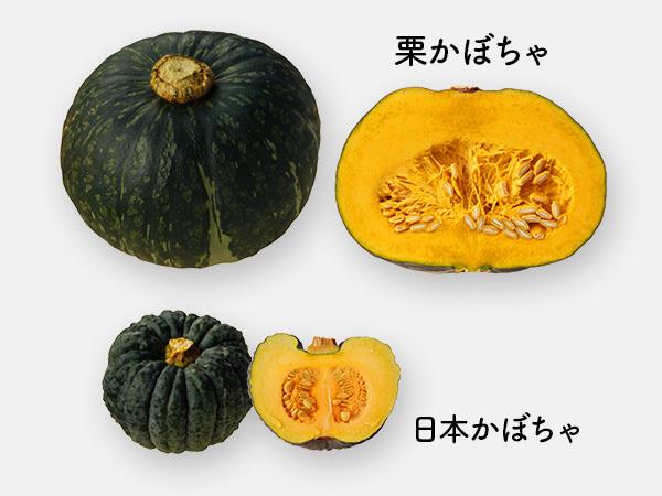 栗かぼちゃ,日本かぼちゃ