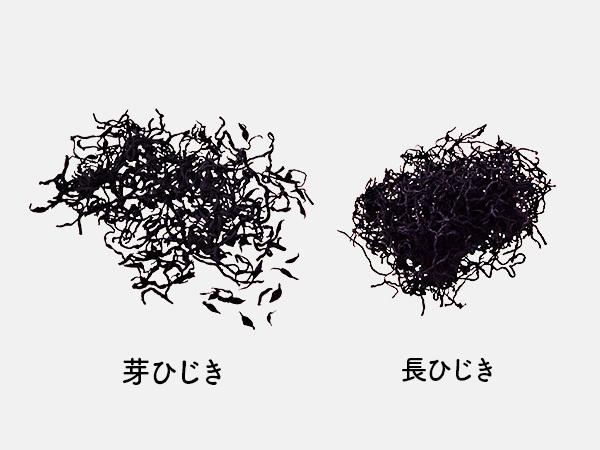 芽ひじきと長ひじき