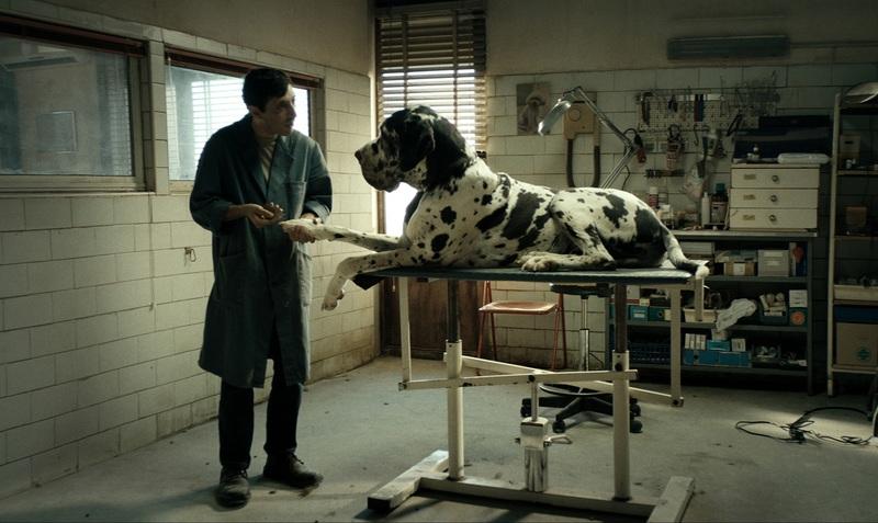 【編集マツコの 週末には、映画を。Vol.21】「ドッグマン」