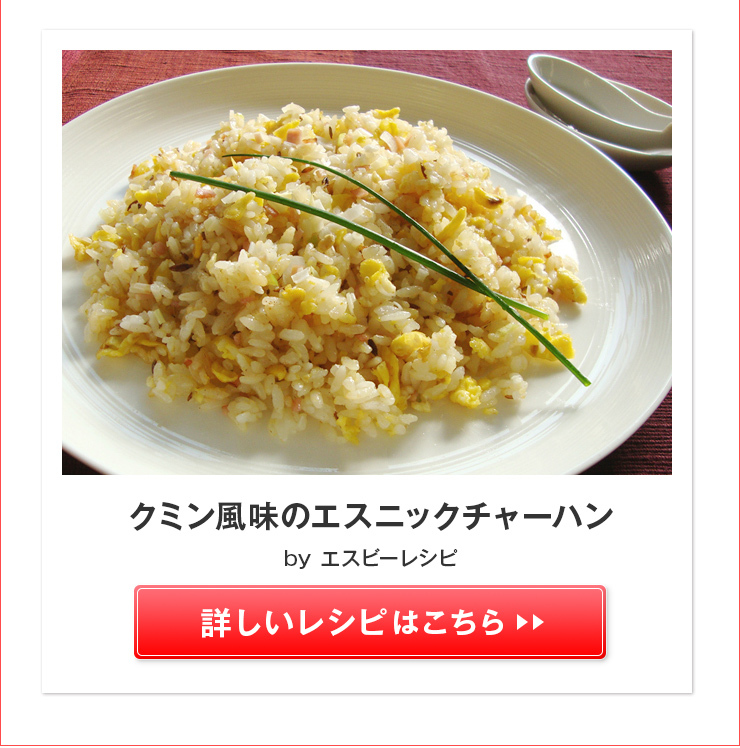 クミン風味のエスニックチャーハン >>