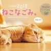 ゆる~いねこたちに癒やされます! 『ねこなごみ。 』卓上カレンダー2019