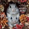 フェルトの動物たちが2019の冬も東京・新宿にやってきた!