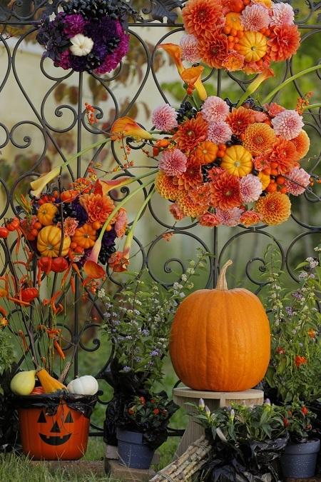 大人気の花カレンダーの「卓上版」。ぜひデスクやミニコーナーに!