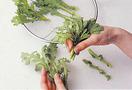 根元についた泥は、ボールにはった水の中で、指でしっかりとこすり落とします。長く水につけると香りがとぶので、手早く洗って。生のまま食べるサラダや、歯ざわりよく仕上げたいかき揚げにするときは、葉だけを使います。包丁を使わなくても、手で柔らかい葉を選んで、茎と分ければOK。茎は刻んで、みそ汁の具などにして。