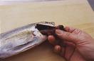 えらを取る えらぶたの中に指を入れ、赤いひだ状のえらを引き出して取り除く。反対側も同様にする。