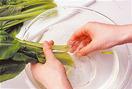 根元を2cmほど切り、切り口を水をはったボールにつけて、茎の間の泥をよく洗います。水の中で、指でしっかりこすり落とすようにして。