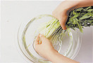 水菜は茎の根元のほうに泥が残っていることがあります。根元を少し切ってから、水をはったボールに切り口をつけ、指先でかるくこすりながら、水の中で泥を洗い落とします。
