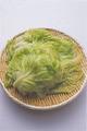 はがした葉は湯の中に入れ、さらに2分ほどゆでる。12枚ほどはがしたら、ざるに広げ、粗熱を取る。