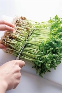 豆苗は根元を切り、長さを半分に切る。ねぎは幅1cmの斜め切りにする。帆立ては塩少々を入れた冷水で手早く洗い、厚みを半分に切る。