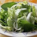 ほうれん草とレタスのサラダ