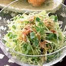 新キャベツのピリ辛サラダ