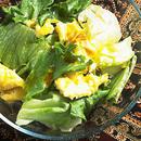 レタスといり卵のサラダ