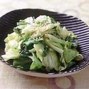 春キャベツのごま風味サラダ