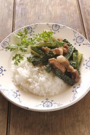 ゴーヤーと豚肉のうま煮かけご飯