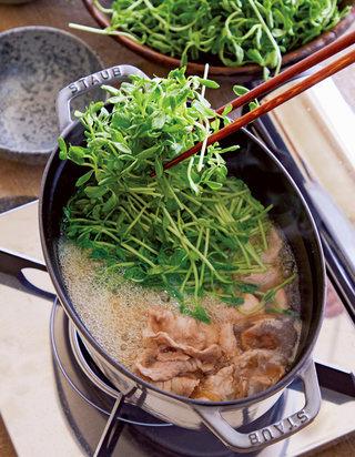 豆苗まみれしょうゆ鍋